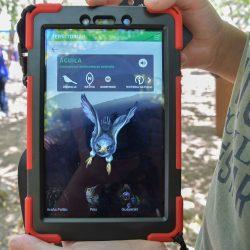 [Ladera Sur] TerritoriAR: Conoce la nueva aplicación de realidad aumentada que fomenta la valoración de la naturaleza