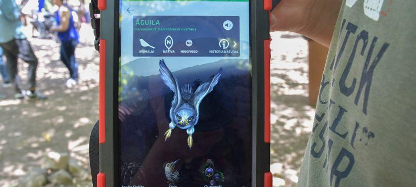 [LUN] De la rana de Darwin al chululo: App muestra imágenes de realidad aumentada de 60 especies nativas